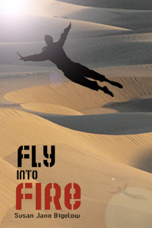 Fly Into Fire - Susan Jane Bigelow