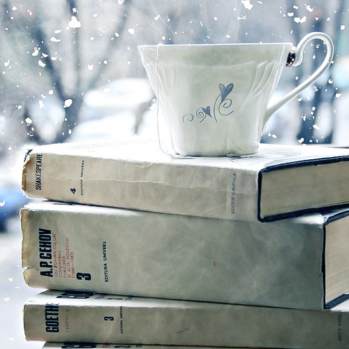 books in snow